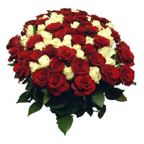Огромный букет из роз. Открытка 8527